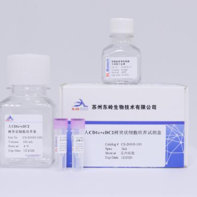 人CD1c+cDC2树突状细胞培养试剂盒