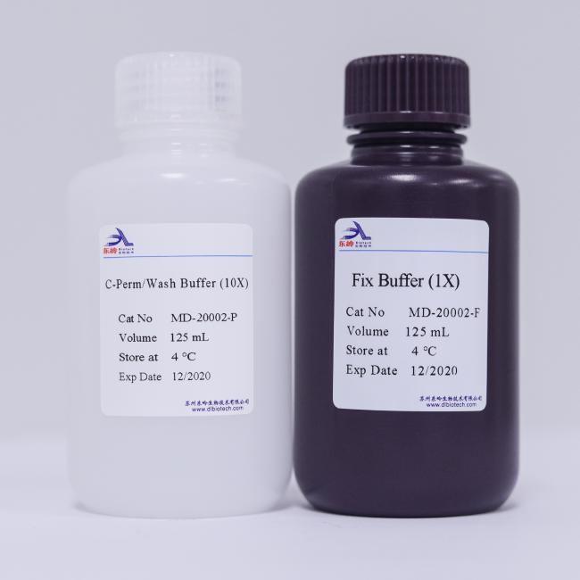 C-Perm Wash Buffer (10X)-Fix Buffer(1X)