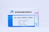 CD3/CD28人T细胞活化/扩增磁珠